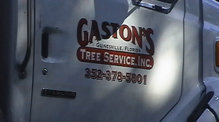 Family Tree Service In Gainesville Fl With Reviews Yp